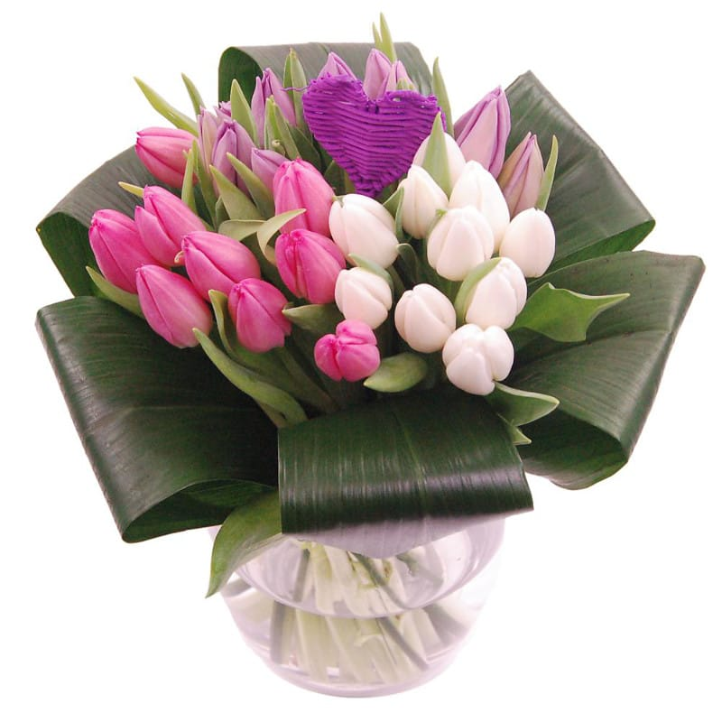 tulip love flower by clare florist