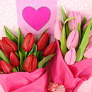Valentine's Tulips – fresh flowers for UK delivery by post – bouquets and arrangements from Clare Florist