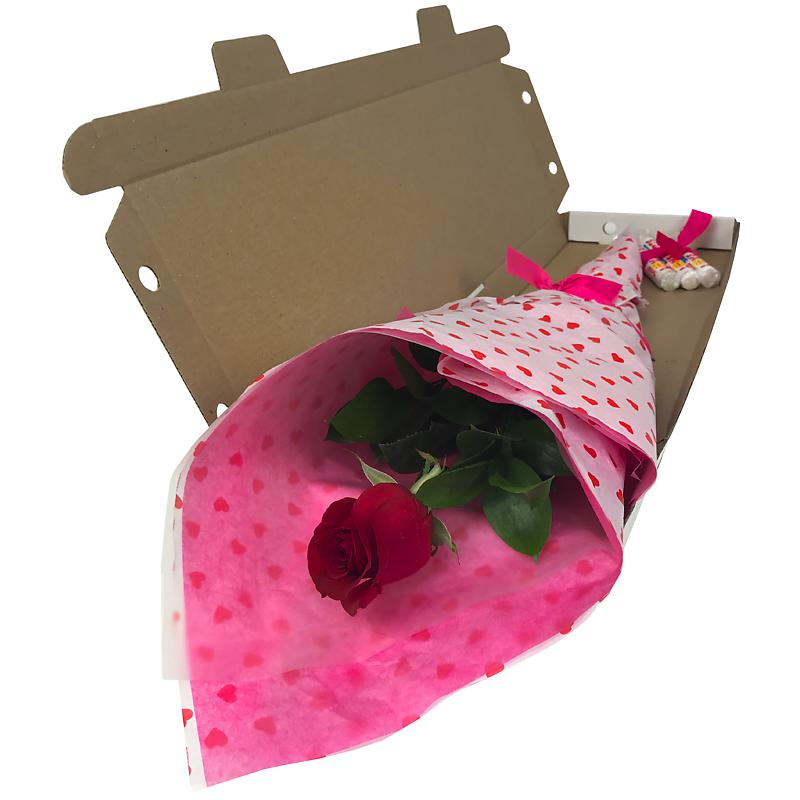 Single Red Rose Letterbox Flower with Free Sweets