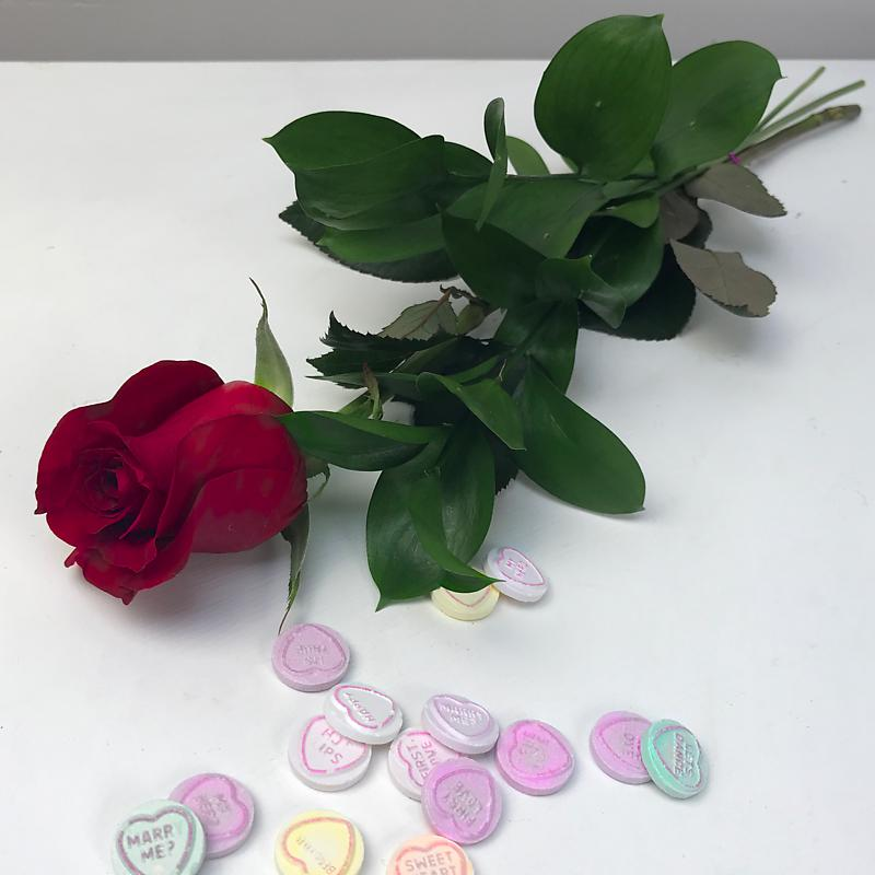 Letterbox Red Rose with Love Hearts