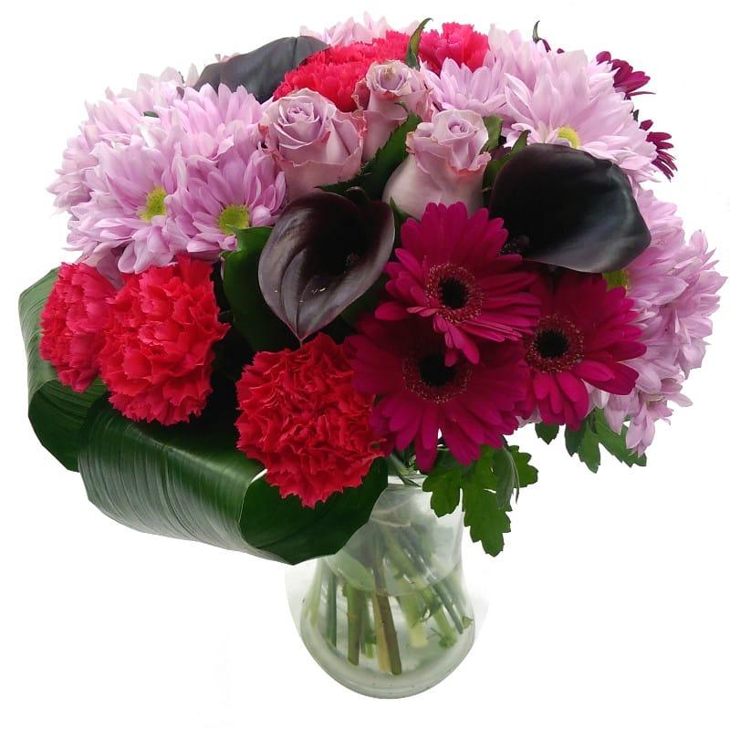 Flowers Raspberry Ripple