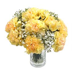 Yellow Carnations Bouquets Delivered Order Online Clare Florist