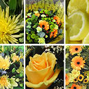 Yellow Flower Collection – fresh flowers for UK delivery by post – bouquets and arrangements from Clare Florist