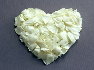 White_roses_heart_wallpaper