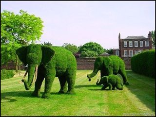 Amazing-Topiary-Art-1
