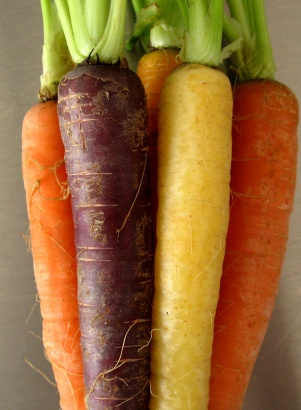 Yellow-organge-purple-carrots