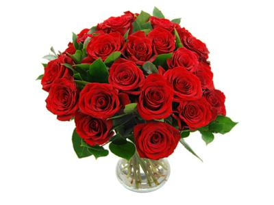Beautiful arrangment of 24 red roses