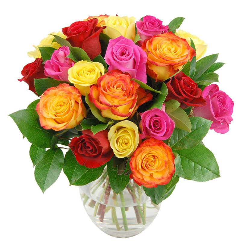 Rainbow Roses - Birthday