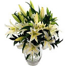 Link to Sympathy Flowers