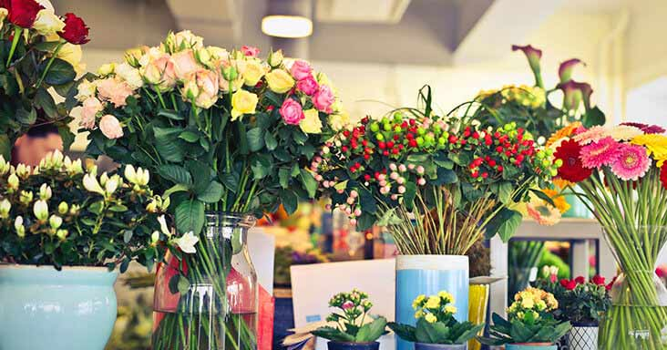 Six Colourful Bouquets for Spring