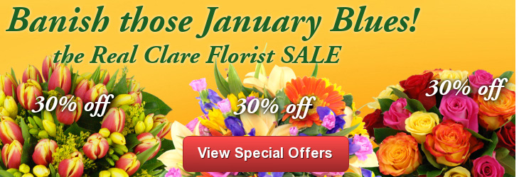 Clare Florist Special Offers - up to 30% off