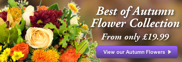 Autumn Flowers from Clare Florist