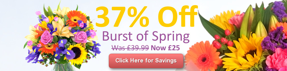 Save 20% on the Burst of Spring Bouquet with Free Delivery!
