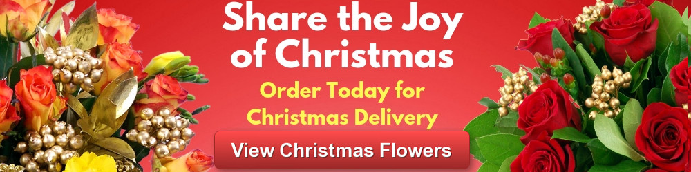 Christmas Flowers Early Offers with Free Delivery - pre-order now!
