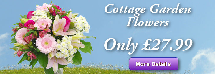 Cottage Garden Flowers from £27.99