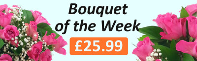 Bouquet of the Week - 20 Pink Roses with Gyp - 42% off