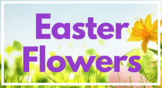Easter Flowers from Clare Florist