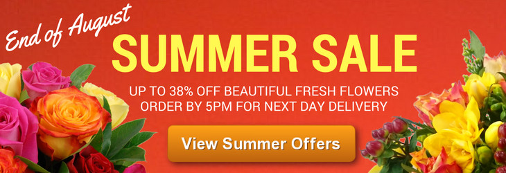 End of August Summer Sale