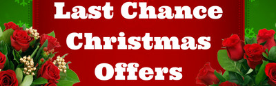 Order Christmas Flowers from Clare Florist