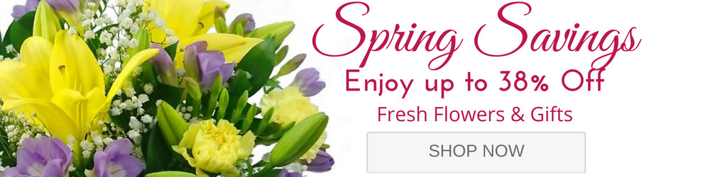 Flash Spring Sale Now On