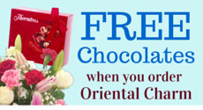 Free Chocolates with every order of Oriental Charm for just £19.99!