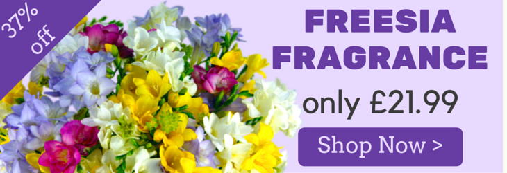 Freesia Fragrance now with 37% off