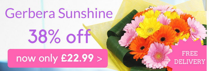 Gerbera Sunshine Bouquet, was £36.99, now only £22.99 with free delivery