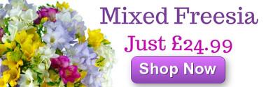 Freesia Fragrance Just £24.99