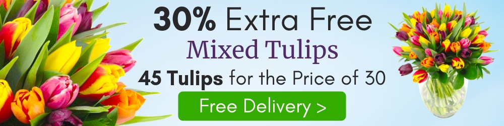 Limited Time Offer - 30% Extra Free Flowers with Every Order of Mixed Tulips