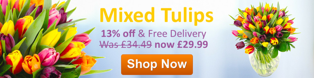 13% off Mixed Tulips with Free Next Day Delivery