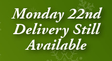 Order Christmas Flowers for Monday Delivery