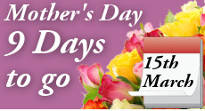 Mother's Day Flowers from Clare Florist