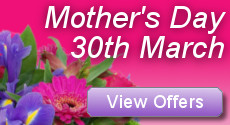 Mother's Day Flower Delivery from Clare Florist