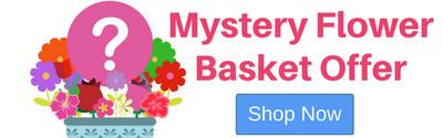 Mystery Flower Basket Special Offer
