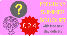 Order our Mystery Summer Bouquet for the Bargain Price of £24 with Free Delivery
