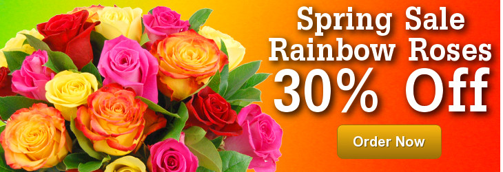 30 per cent off Rainbow Roses in the Clare Florist spring sale