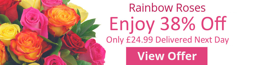 Half Price Sale on Rainbow Roses Bouquet with Free Delivery