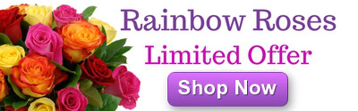 Rainbow Roses Offer