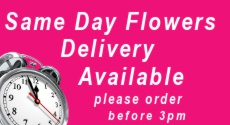 Same day Flower Delivery from Clare Florist