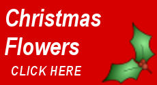 Clare Florist - Fabulous flower delivery this Christmas