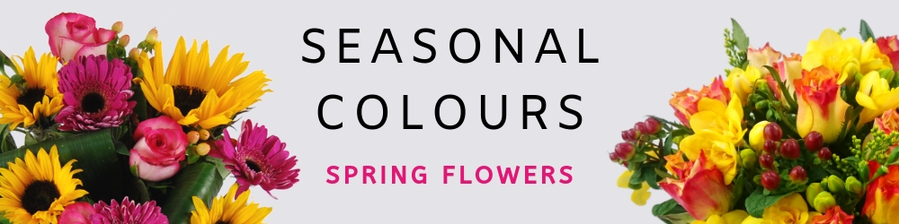 Shop Spring Flowers with Free Next Working Day Delivery