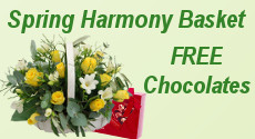 Spring Harmony with Free Chocolates