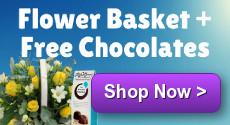 Spring Harmony with Free Chocolates