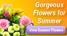 Summer Flowers by Clare Florist
