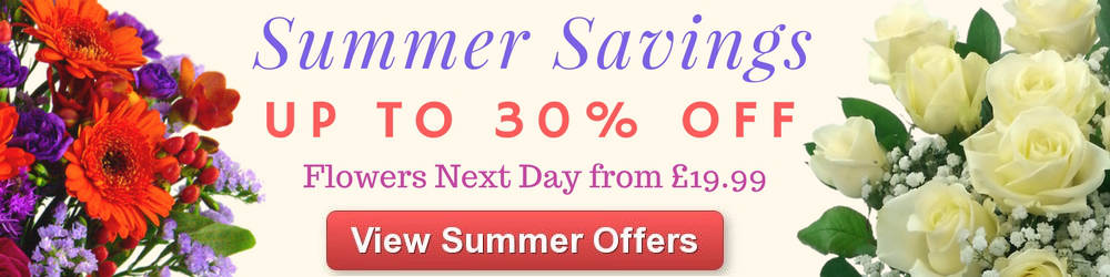 View Summer Savings