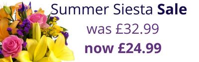 Summer Siesta Sale - Shop now