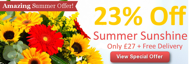 Summer Sunshine Only £19.99