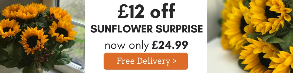 Sunflower Surprise - save 32% plus Free Delivery