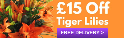 Order Tigers Lilies with £15 Off
