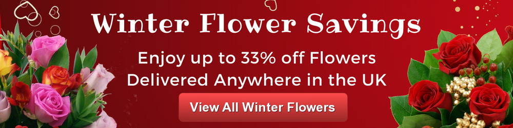 Save up to 33% on Winter Flowers